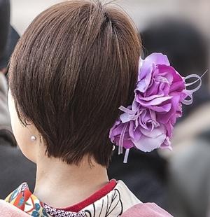 hair300-6